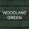 colour_woodland_green